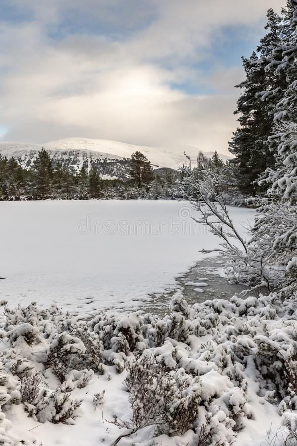 Uath Lochan在幽谷Feshie的冬天在凯恩戈姆山脉国立公园 免版税库存图片
