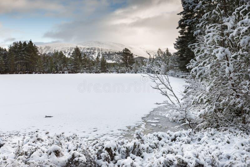 Uath Lochan在幽谷Feshie的冬天在凯恩戈姆山脉国立公园 图库摄影