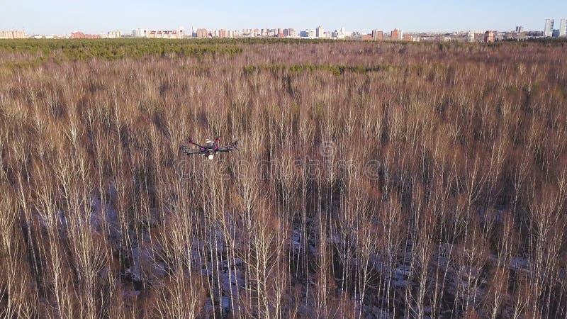 UAV怯弱了空中车寄生虫高昂在凋枯的森林和城市上的天空背景的 ?? 抬举费力 免版税库存图片