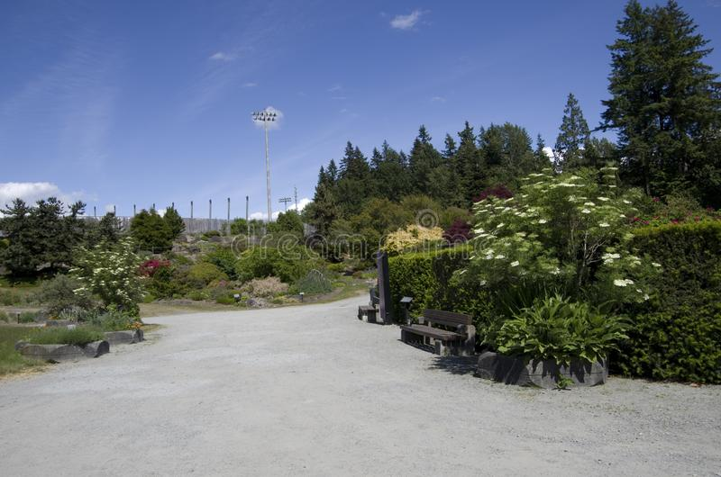 UBC botanical garden flowers blooming. UBC botanical garden in spring with beautiful flowers and plants stock photo