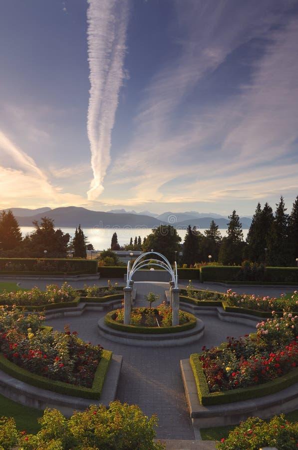 UBC rose garden. At sunset stock image