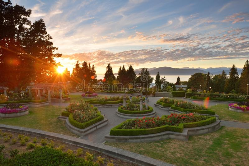 UBC Rose Garden at sunset. Vancouver, BC royalty free stock photography