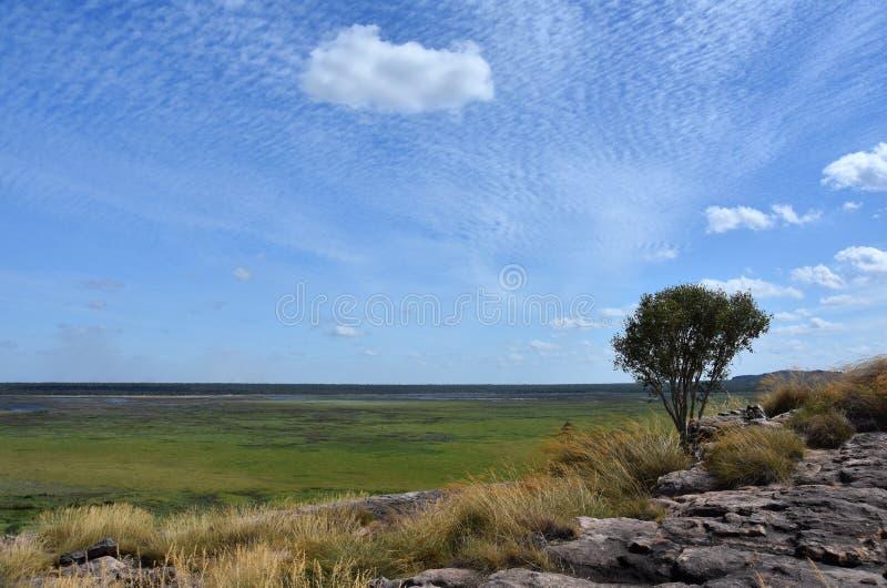 ubirr nordique national de territoire de site de stationnement de surveillance de kakadu de l'australie d'art photo libre de droits