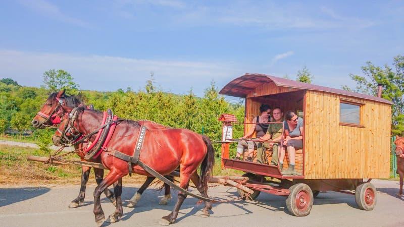 Ubla, Slowakije - 02 September 2018: Paarden met de Houten Trein van de Zigeunerwagen op een Weg stock afbeelding
