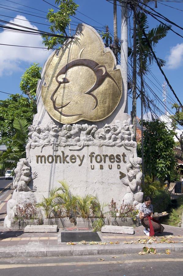 Ubud猴子森林纪念碑 免版税图库摄影
