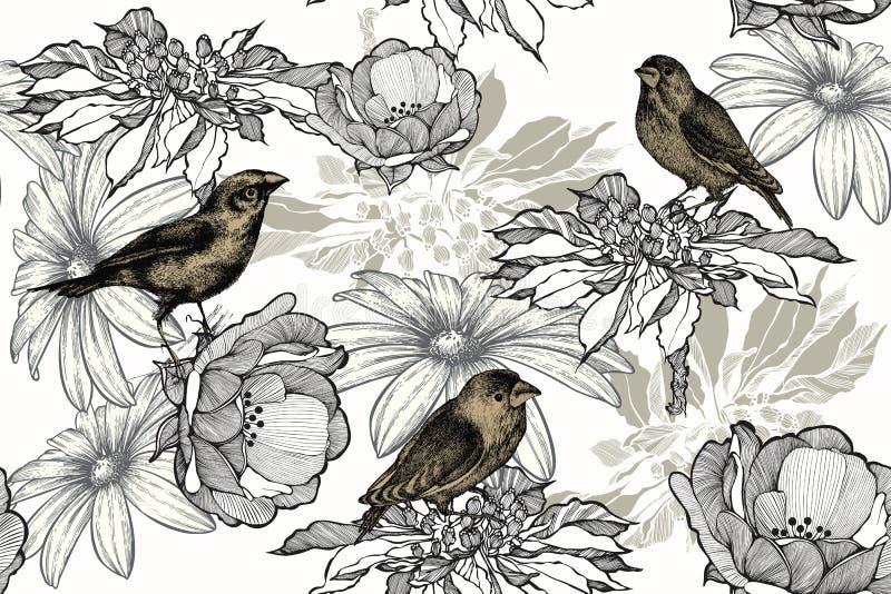 Uccelli con le rose su un fondo senza cuciture e floreale Modello senza cuciture, illustrazione di vettore illustrazione vettoriale
