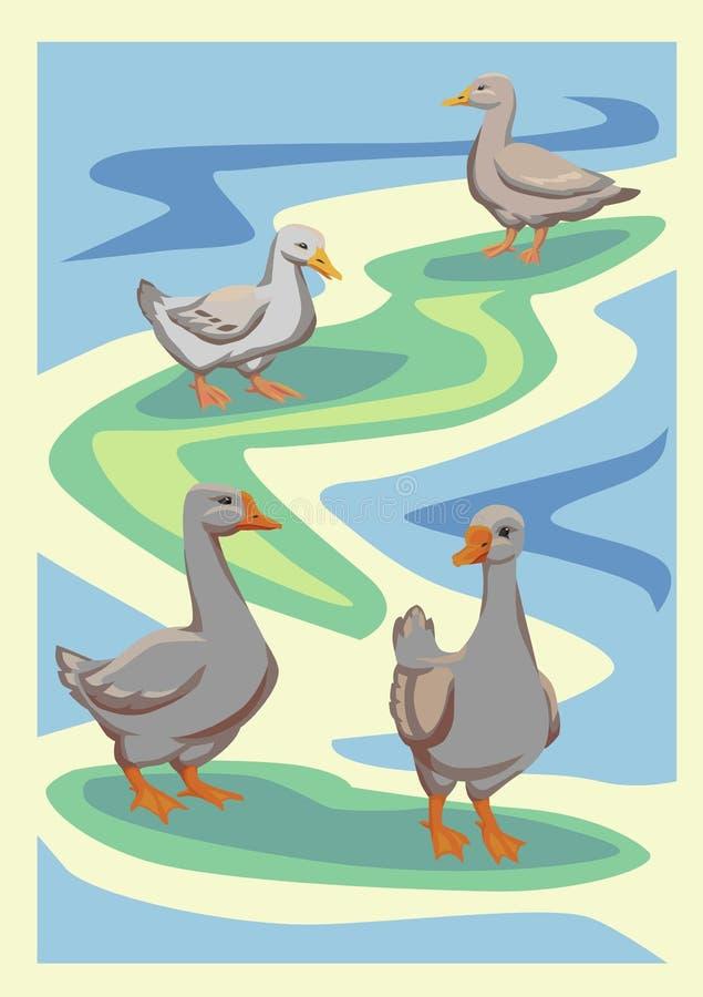 Uccelli degli uccelli acquatici di vettore royalty illustrazione gratis