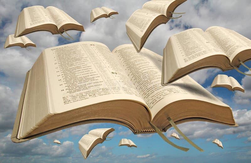 Uccelli della bibbia di libertà immagini stock libere da diritti