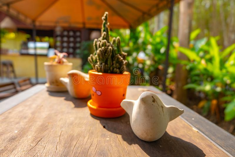 Uccelli di legno e piccola pianta immagine stock libera da diritti