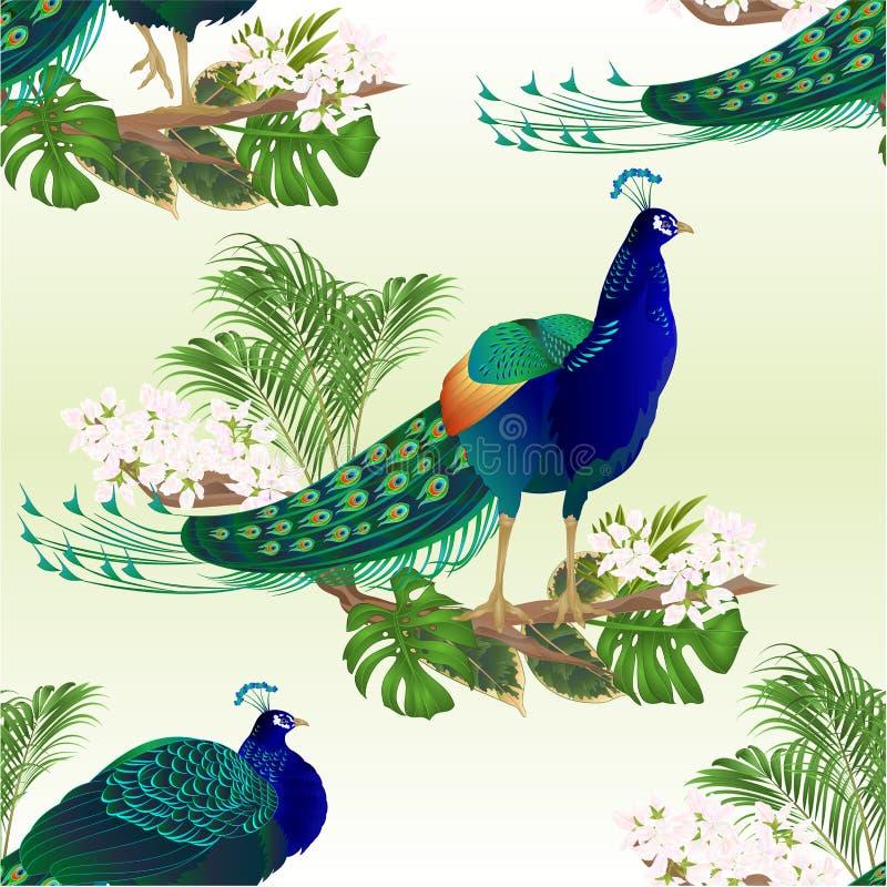 Uccelli esotici di struttura di bellezza senza cuciture dei pavoni naturali ed illustrazione d'annata di vettore dell'acquerello  royalty illustrazione gratis
