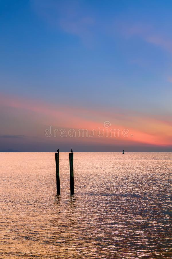 Uccelli sugli accatastamenti contro il tramonto fotografie stock