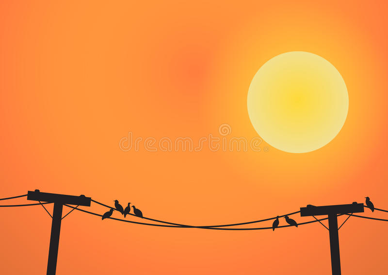 Download Uccelli Sulla Posta Di Elettricità Prima Dell'insieme Del Sole Illustrazione Vettoriale - Illustrazione di elettrico, industria: 56876633