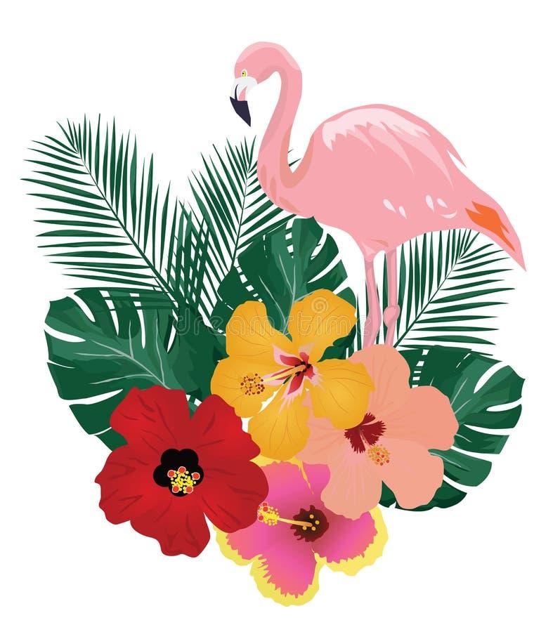 Uccelli tropicali di vettore illustrazione vettoriale