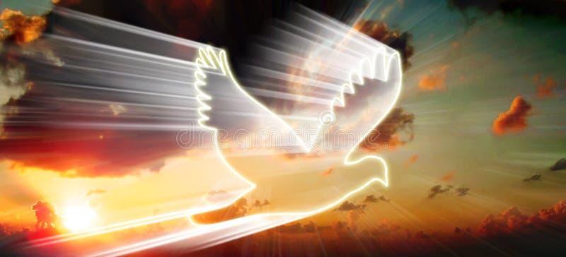 Uccello Bianco Immagini Stock Libere da Diritti