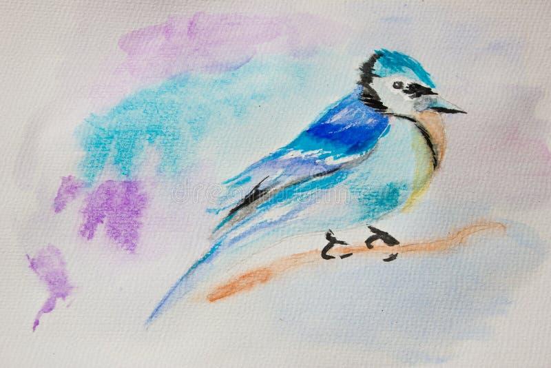 Uccello blu su un ramo fotografia stock libera da diritti