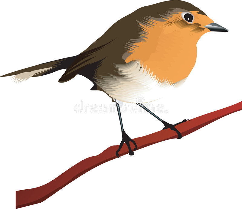 Uccello che si siede sul branc dei treeâs illustrazione vettoriale