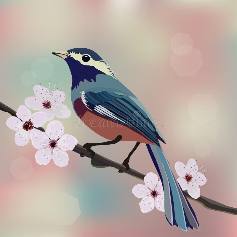 Disegno, uccello e fiore di carta illustrazione vettoriale