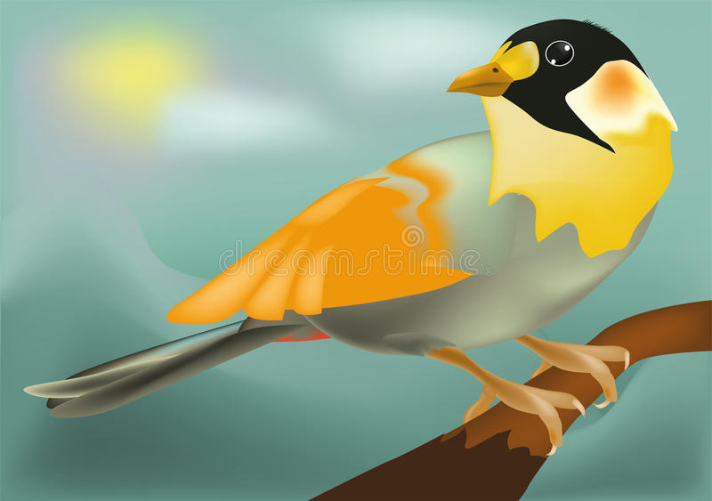 Uccello di colore royalty illustrazione gratis