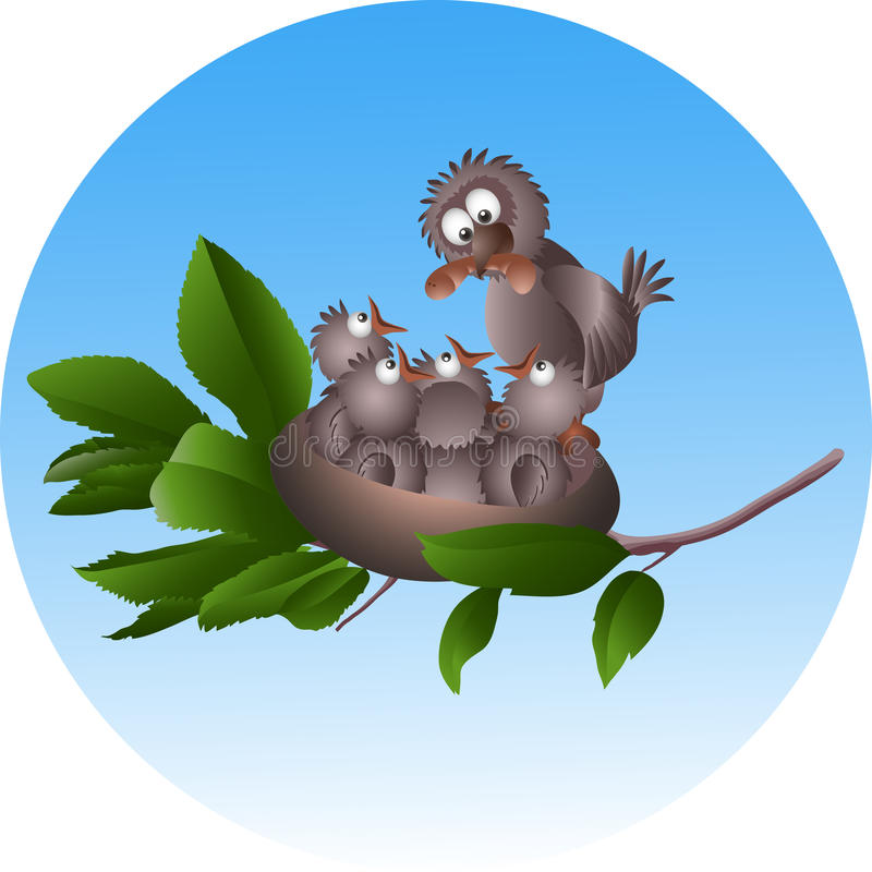 Uccello ed uccelli di bambino in un nido illustrazione vettoriale