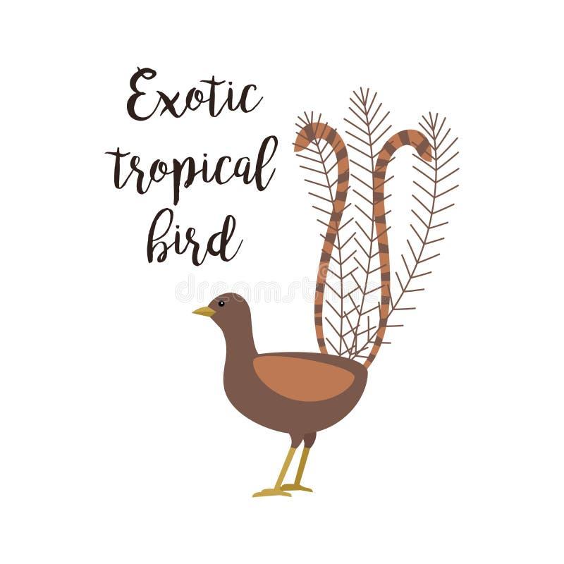 Uccello marrone tropicale esotico illustrazione di stock