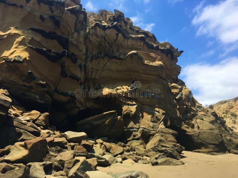 Uccello nero su grande formazione rocciosa a La Tinosa Ecuador immagini stock