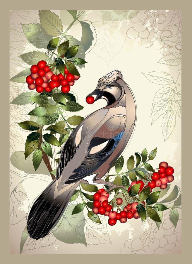 Uccello una ghiandaia su un ramo della cenere di montagna illustrazione di stock