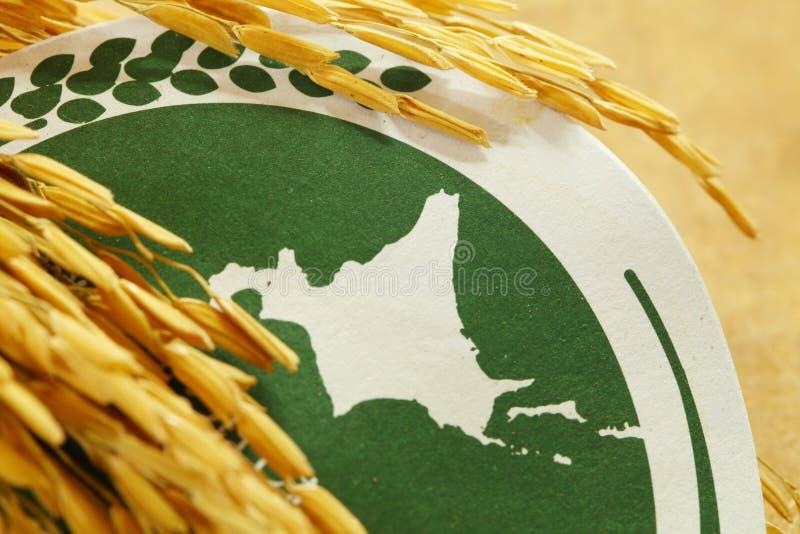 Ucho stawiający dalej stary spodeczka papier ryż adra obrazy stock