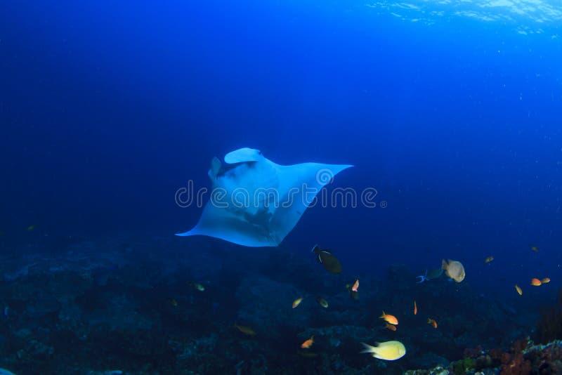 ucieczce z atolu zdjęcia royalty free