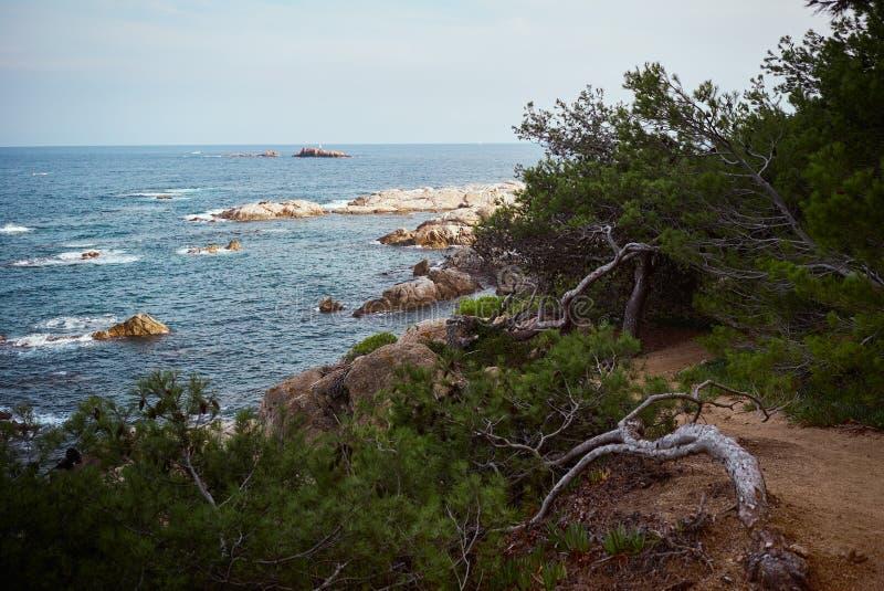 Ucieczka denny wybrzeże w naturze obrazy stock