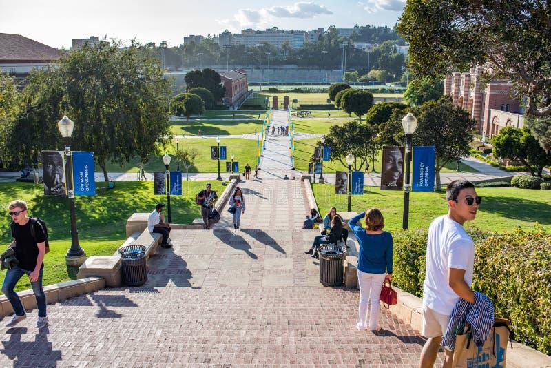 UCLA kampus zdjęcia royalty free