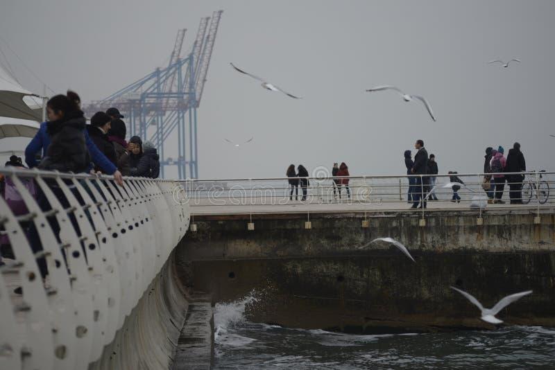 Ucrânia, Odessa Langeron 5 de dezembro de 2015 Os povos estão andando no cais As gaivotas voam Guindastes portuários imagens de stock