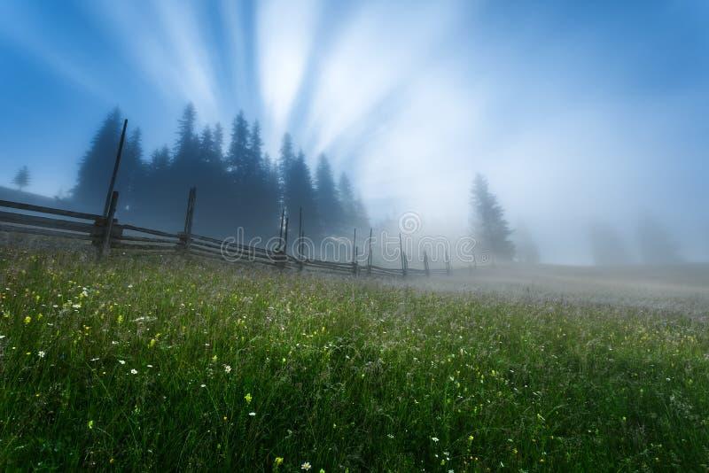 ucrania cárpatos Dzembronya Los primeros rayos del sol foto de archivo libre de regalías