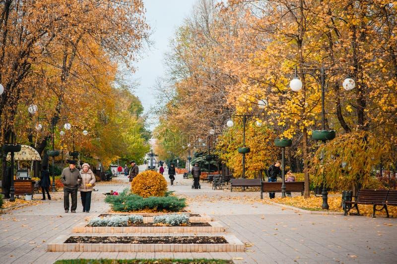 UCRANIA, DONETSK, NOVIEMBRE, 03, 2015: Avenida hermosa del otoño y gente que camina imagen de archivo libre de regalías