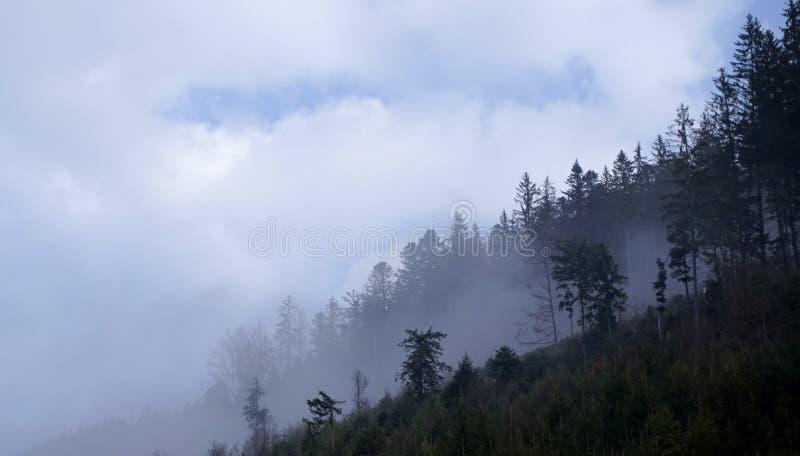 Ucrania, montañas cárpatas, paisaje de la montaña, mañana en las montañas imagenes de archivo