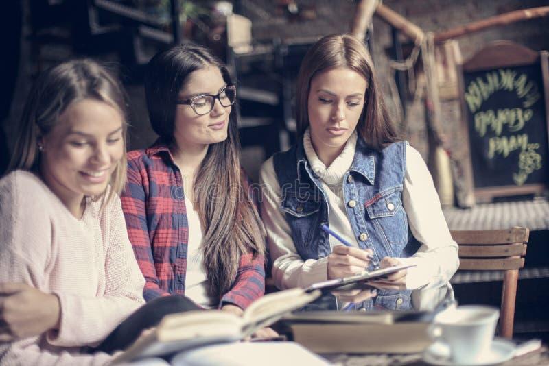 Uczeń dziewczyny uczy się wpólnie obraz stock