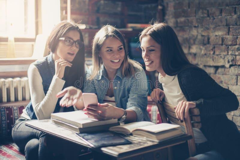 Uczeń dziewczyny w bibliotecznej używa wiszącej ozdobie wpólnie obrazy stock