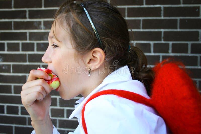 uczeń jabłkowego fotografia royalty free