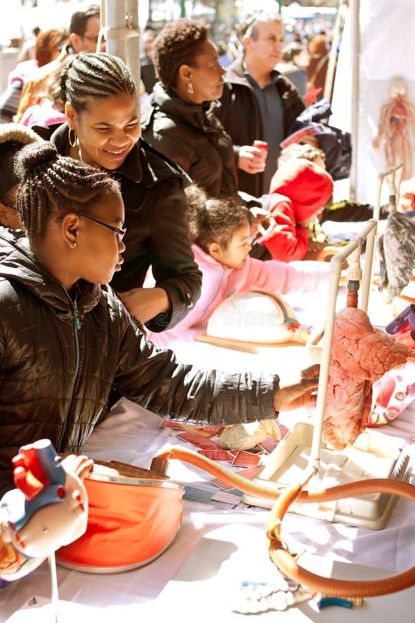 Ucznia dotyka Istny Ludzki płuco Przy Atlanta nauki jarmarkiem obrazy royalty free