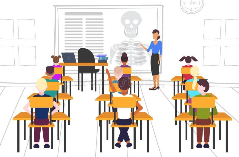 Uczniowie siedzący na biurkach patrząc na nauczycielkę wskazując na koncepcję edukacji w zakresie biologii szkieletowej i anatomi royalty ilustracja