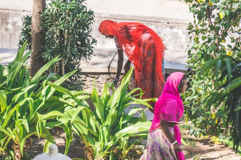 UDAIPUR INDIEN - kvinnor för 10 som FEBRUARI, 2014 - två indiska arbetar, i trädgård, lokalvård och att sopa fotografering för bildbyråer