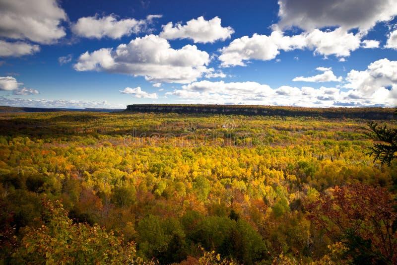 UddeCroker Cliff Autumn Fall Forest Trees landskap arkivbild