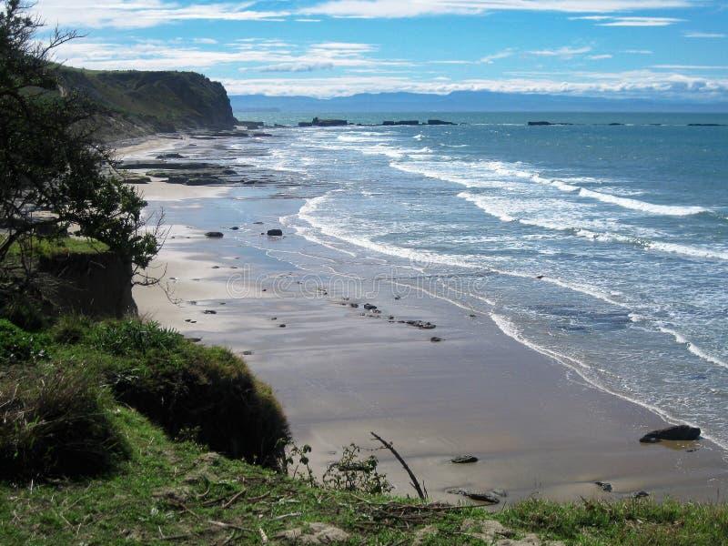 Uddekidnappareshoreline i Napier, Nya Zeeland fotografering för bildbyråer