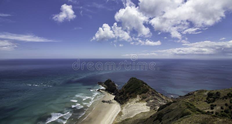 uddereingaNya Zeeland dagsutflykt royaltyfri fotografi