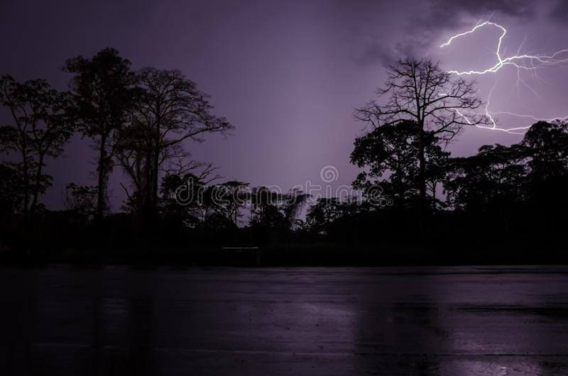 Uderzenie pioruna podczas dramatycznej burzy z sylwetkami drzewa i las tropikalny, Cameroon, Afryka zdjęcie royalty free