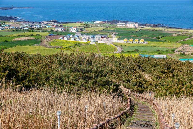 Udo、绿色领域和蓝色海,一次旅行向韩国,一个美好的风景海岛  免版税库存图片