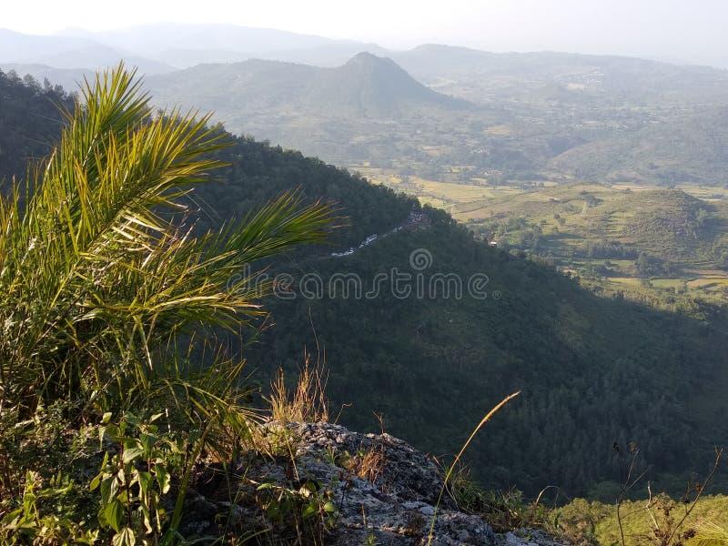 Uduchoweni schwytani czasy w ananthagiri gór @galikonda zdjęcie stock