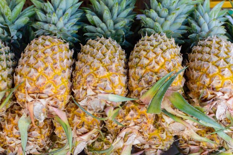 udziałów ananasy obrazy royalty free