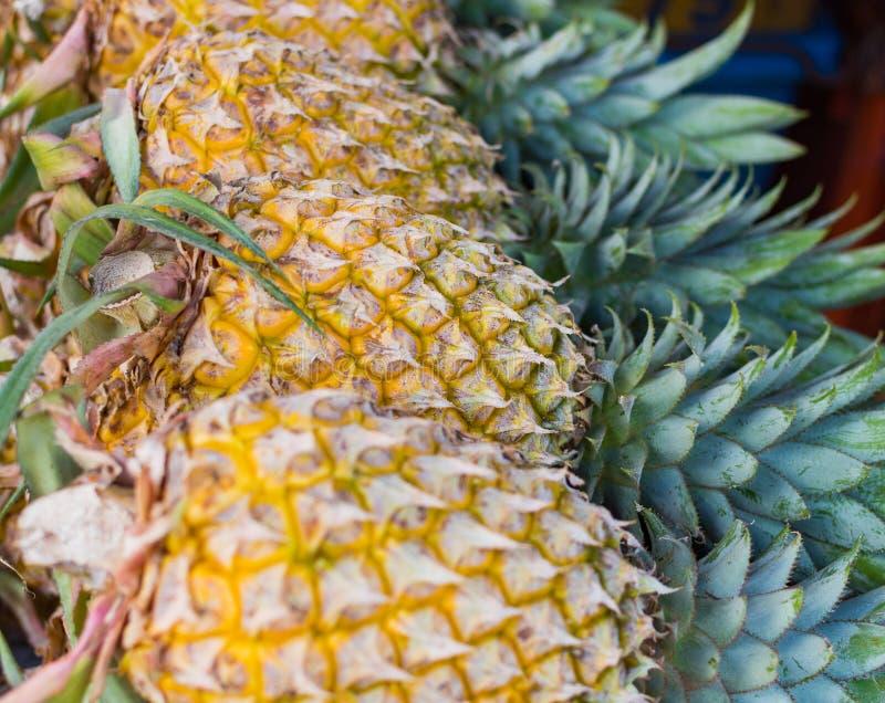 udziałów ananasy fotografia royalty free