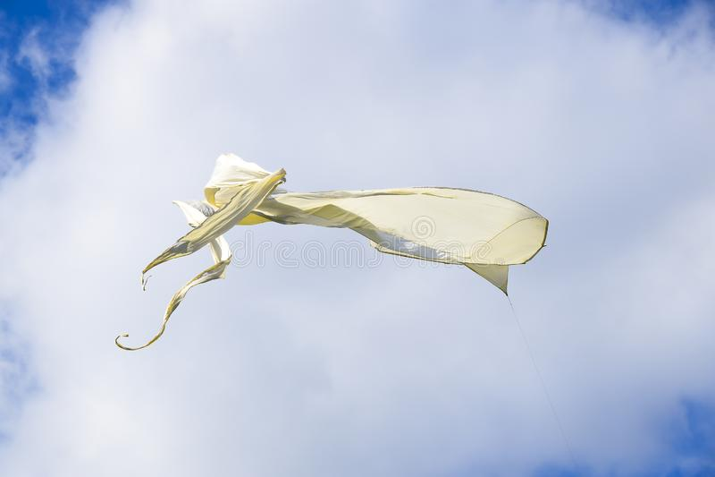 Udział barwić kanie w nieba pionowo tle zdjęcia royalty free