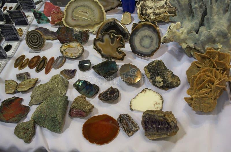Udział różnorodni różni kryształy wystawiający na stole obraz royalty free
